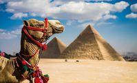 Египет готов принимать более 300 тысяч российских туристов ежемесячно