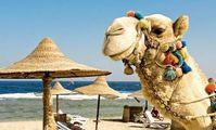 В Египте задаются вопросом о сроках возвращения чартеров из России на Красное море