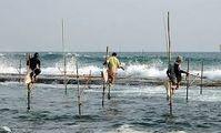 Египет начинает строительство рыбных ферм в африканских странах