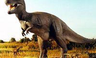 В Красном море ученые обнаружили следы окаменелостей динозавров