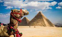 Прямое авиасообщение между Россией и Египтом откроется 9 сентября