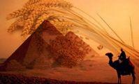 В Госпродпотребслужбе объяснили, почему Россия пытается вытеснить украинское зерно из Египта