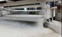 В Египте построят самый большой сахарный завод в мире