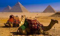 «Чартеры на египетские курорты». Четвертый сезон. Сочи, октябрь 2018 года