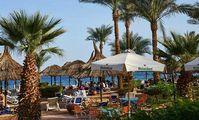 В Египте туристов могут пустить в отели со справкой об отсутствии вируса