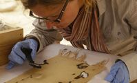 Археологи рассказали о моде Древнего Египта