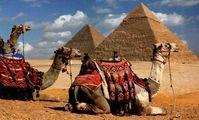Российские чиновники проверят курорты Египта на защиту от Covid-19 Подробнее: https://eadaily.com/ru/news/2021/07/27/rossiyskie-chinovniki-proveryat-kurorty-egipta-na-zashchitu-ot-covid-19