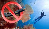 Возвращение российских туристов в Египет может побудить Великобританию снять аналогичный запрет