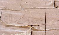 Ученые расшифровали загадочные надписи и рисунки времен Древнего Египта