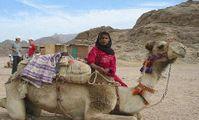 Египетские бедуины. Бедуины Египта в пустыне