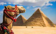 Египет ищет новые рынки
