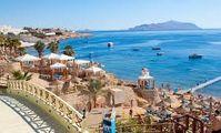 Профсоюз гидов Египта заявил о некорректном подсчете туристов