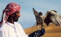 сокол на гербе Египта