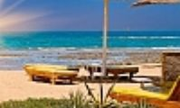 Египетский курорт на Красном море резко «позеленеет»