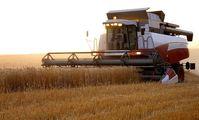Россия и Египет создадут совместное сельхозпроизводство.