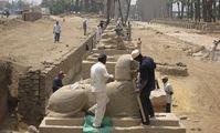 На Аллее сфинксов в Луксоре обнаружили новую статую льва с головой человека