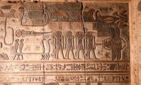 В Древнем Египте о созвездиях знали больше, чем сейчас - ученые в восторге от новой находки