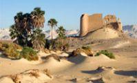 Бахрия - оазис в пустыне Египта