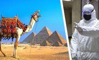 Число случаев коронавируса в Египте превысило пять тысяч