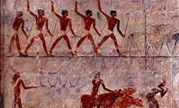 Заселение Земли человечеством началось с Египта, а не Эфиопии