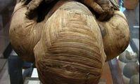 На египетской мумии нашли список покупок