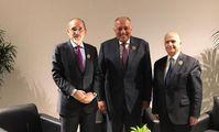 Главы МИД Египта, Иордании и Ирака обсудят в Багдаде трехстороннее партнерство