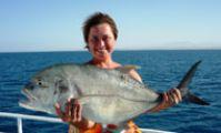 Рыбы Красного моря. Каранкс