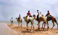 Путешествия по Египту