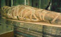 мумии в каирском музее