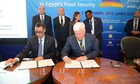ООН и НИБУЛОН начали сотрудничество для улучшения продовольственной безопасности в Египте