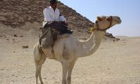 Египетская туристическая полиция будет изучать историю Древнего Египта