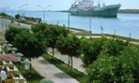 Поставки грузов из Египта в Россию, SVR Group