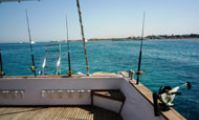 рыболовное сафари в Красном море, Египте