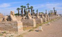 Древние египетские гробницы неохотно раскрывают новые сокровища